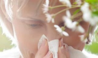 How to prevent Springtime Allergies