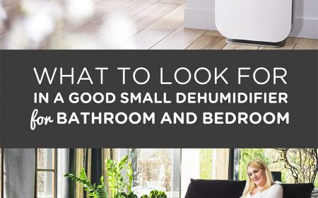 What to Look for in a Good small Dehumidifier for Bathroom and Bedroom