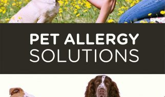 Pet Allergy Solutions