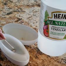 Essential Oil Diffuser Cleaning with Vinegar