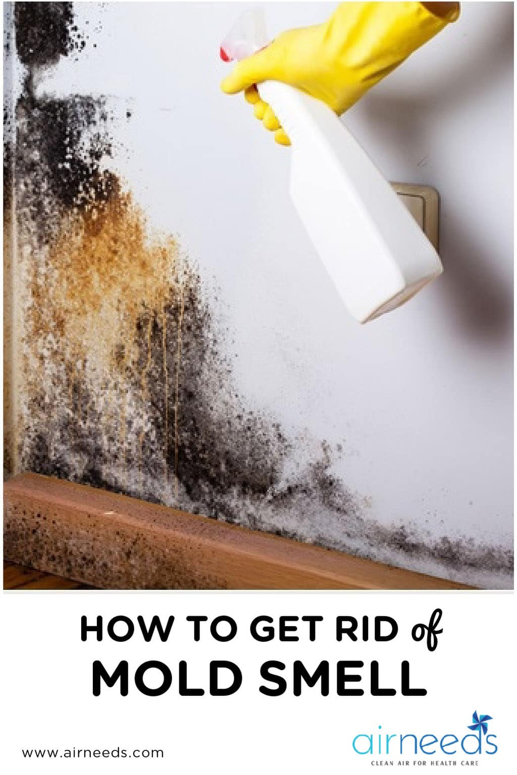 4 tips on how to get rid of mold smell in the house airneeds. Black Bedroom Furniture Sets. Home Design Ideas