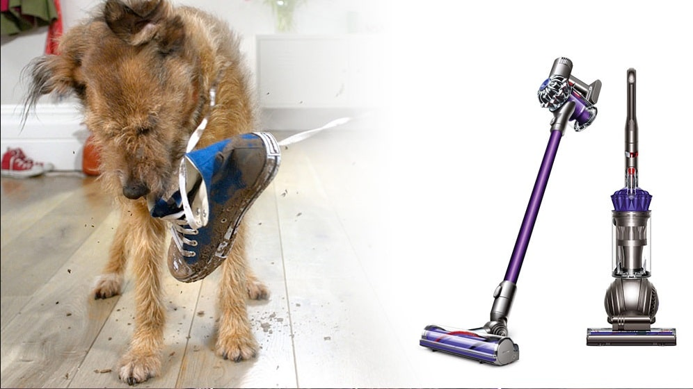 Pet Hair Is Everywhere Then These Best Vacuums For Pet
